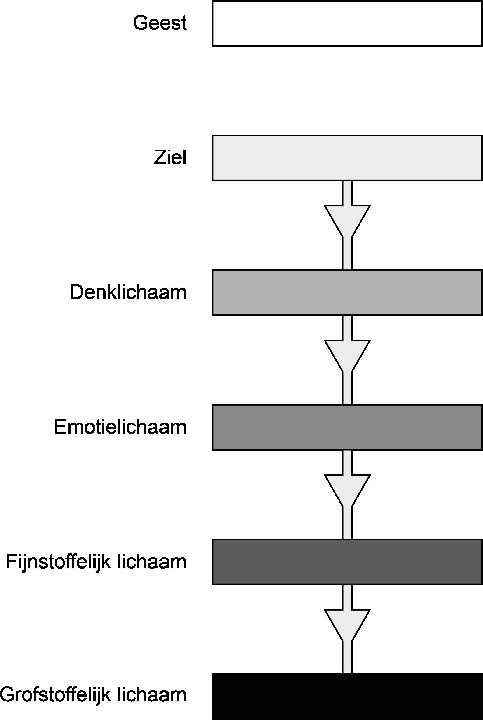 Bewustzijnsdraad