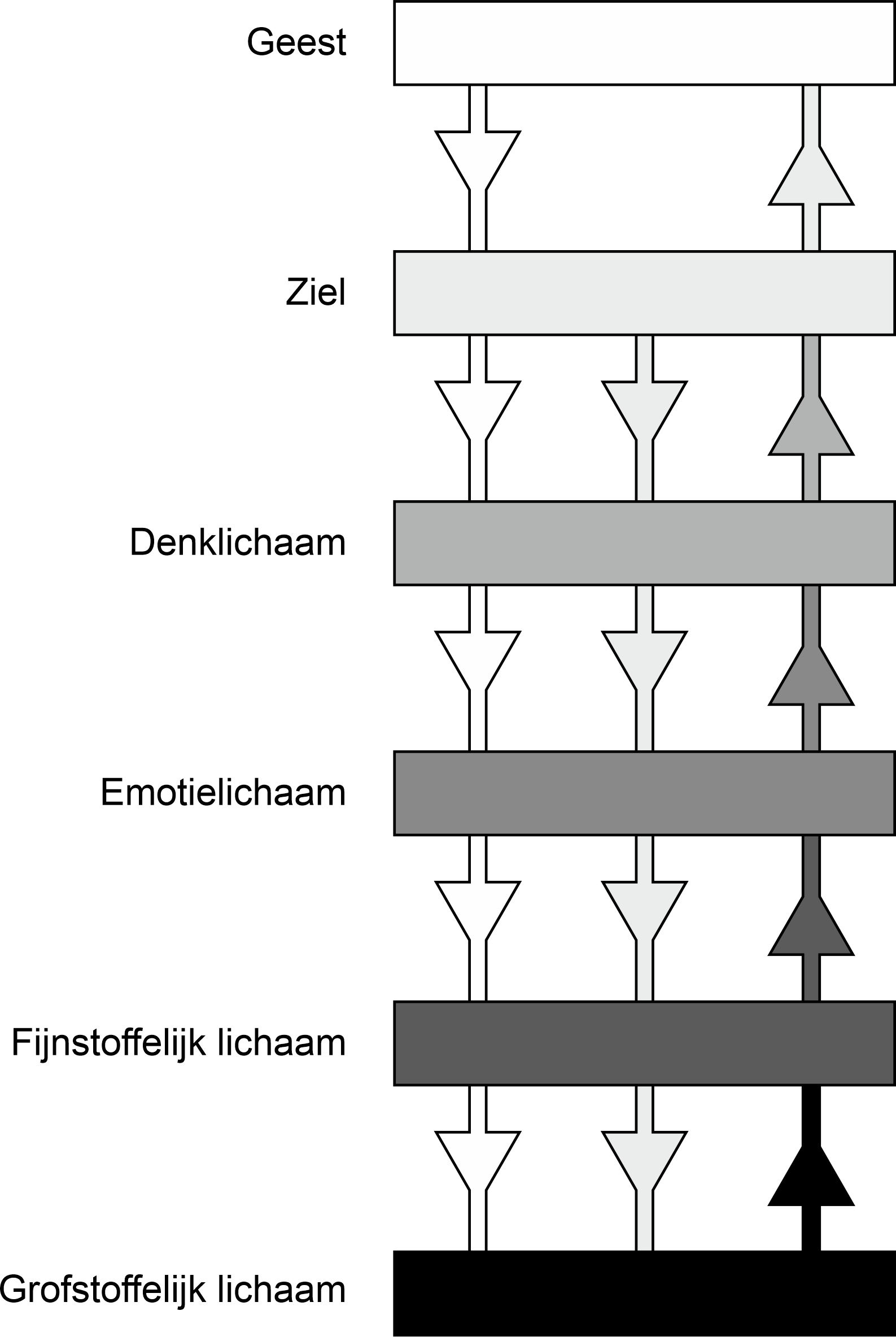 Bewustzijnsdraad, levensdraad, scheppingsdraad en eerste en tweede deel van de regenboogbrug